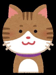 微笑むジャニーズ好きのネコメケメケ